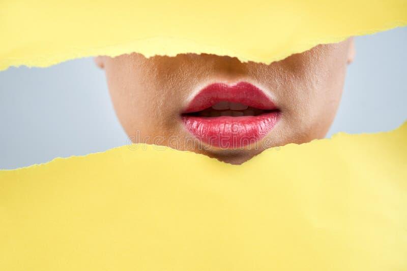 Labios rosados llenos de la mujer fotos de archivo libres de regalías