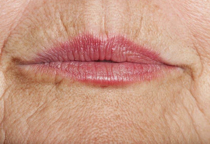 Labios viejos con la piel arrugada foto de archivo