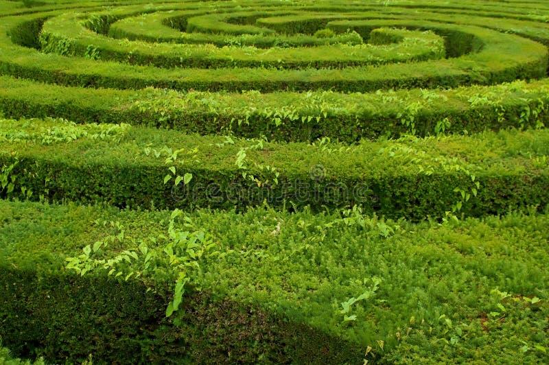 Labirinto immagine stock libera da diritti