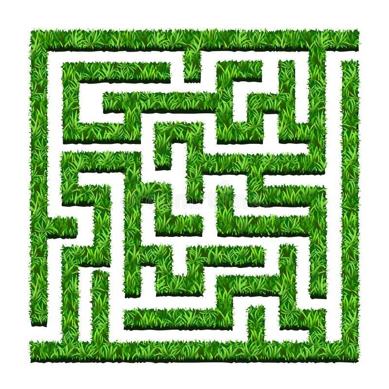 Labirinto dei cespugli verdi, giardino del labirinto Illustrazione di vettore Iso illustrazione di stock