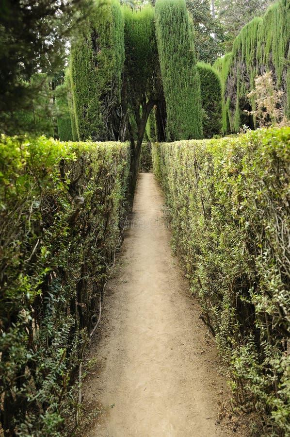Labirinto dentro do Alcazar real, Sevilha imagem de stock royalty free