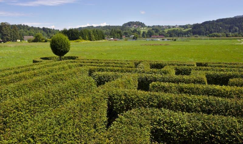 Labirinto em uma conversão fotografia de stock royalty free