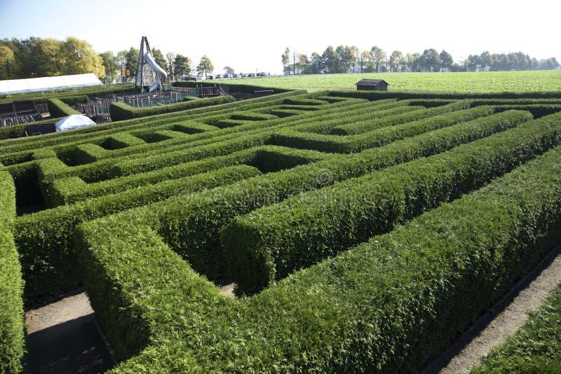 Labirinto in Kleinwelka Bolzano Germania fotografie stock libere da diritti
