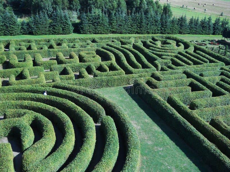 Labirinto verde fotografie stock