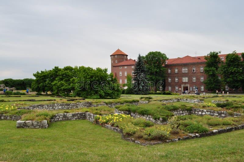 Labirints verdes imagem de stock royalty free
