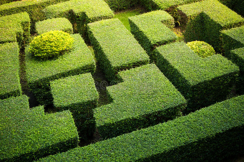 Labiryntu ogród zdjęcie stock