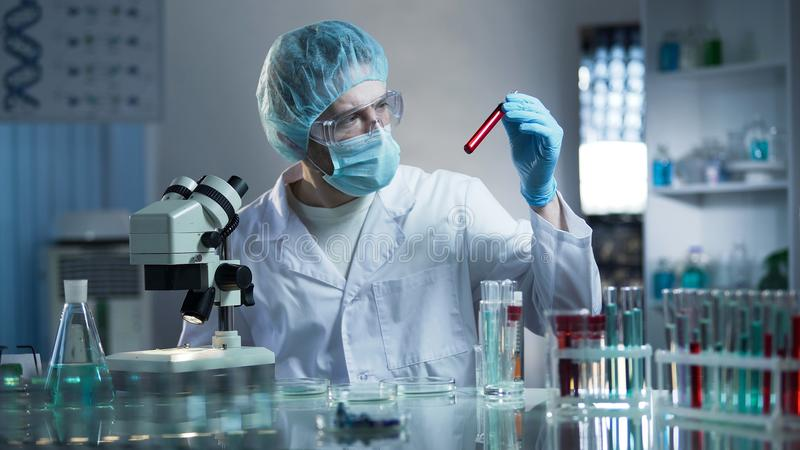 Laboranckiego pracownika studiowania próbki krwi wykrywać patologie, badania medyczne obrazy royalty free