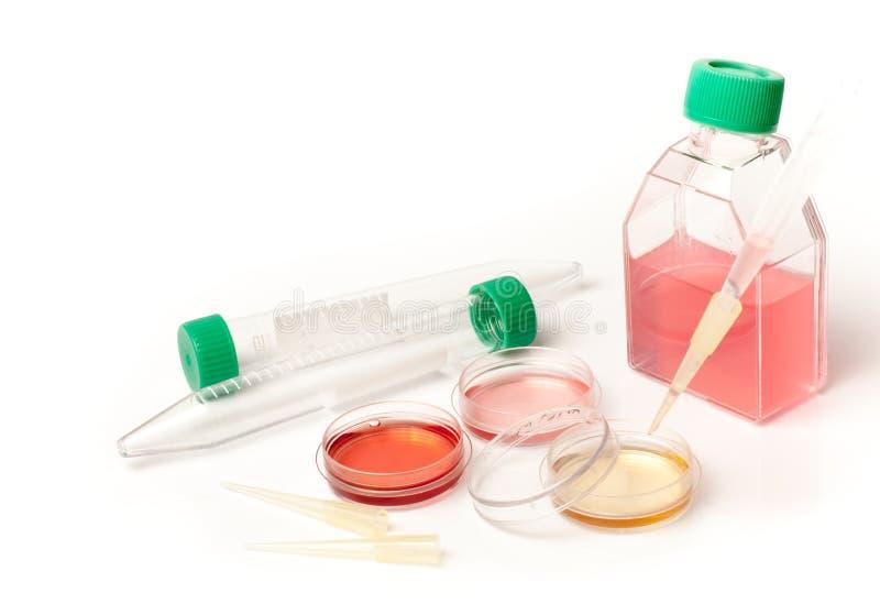 Laboratório diagnóstico médico foto de stock