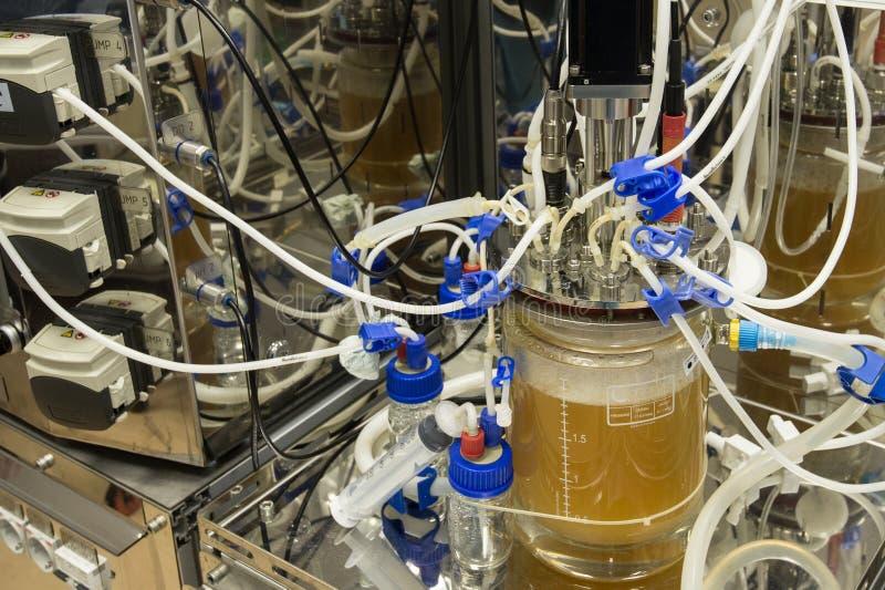 Laboratório inovativo da biotecnologia da mundo-classe da pesquisa foto de stock royalty free