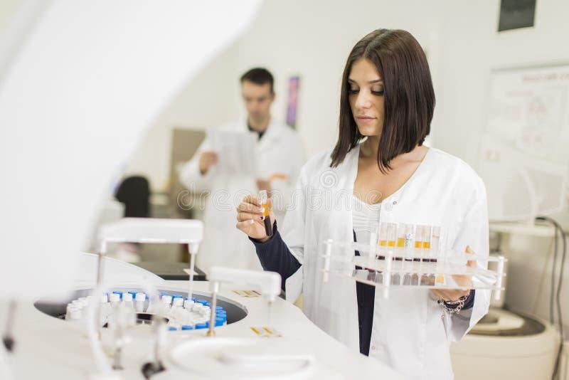 Laboratório médico imagem de stock