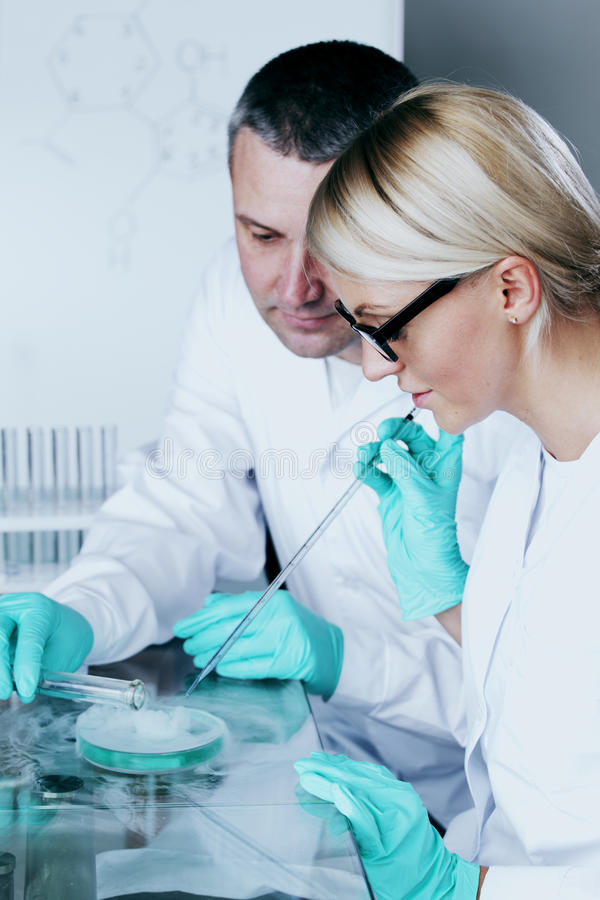 Laboratório químico fotografia de stock royalty free