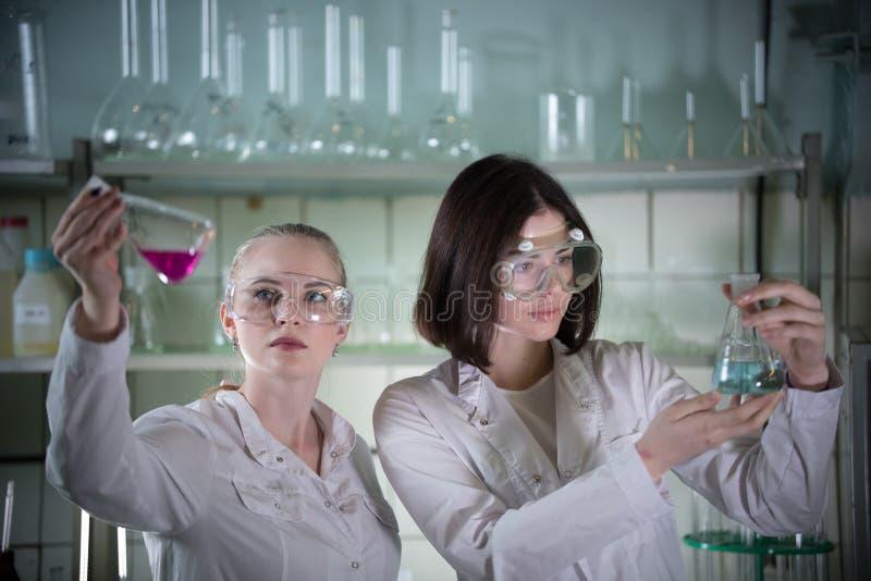 Laboratório químico Jovem mulher dois nos vidros do trabalho que guardam garrafas diferentes com líquidos nele Olhando a garrafa fotografia de stock royalty free