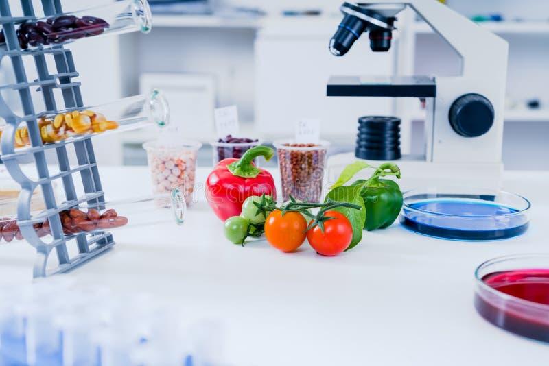 Laboratoire chimique des approvisionnements alimentaires La nourriture dans le laboratoire, ADN modifient GMO a génétiquement mod photographie stock