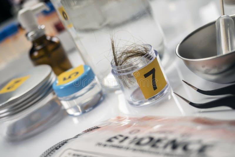 Laboratoire criminalistique, analyse de cheveux images stock