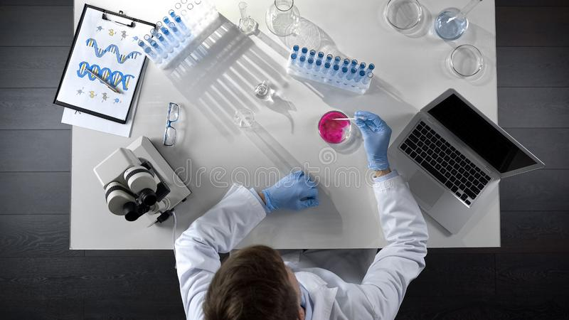 Laboratorian combinant deux agents chimiques dans le plat, vue supérieure de recherches scientifiques images stock