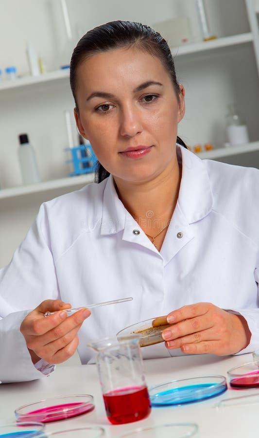 Laboratorio femenino de Analyzing Sample In del científico Ayudante de laboratorio que analiza una muestra imagenes de archivo