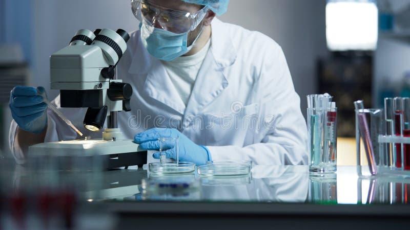 Laboratorio médico de clase superior que se ocupa del desarrollo de las vacunas para los soldados fotos de archivo