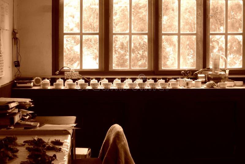 Laboratorio nella fabbrica del tè fotografia stock libera da diritti