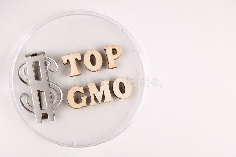 Laboratoriumändringar i organisk mat Stoppa GMO Orden är skriftliga i träbokstäver och dollarsymbolet på den petri maträtten royaltyfri bild