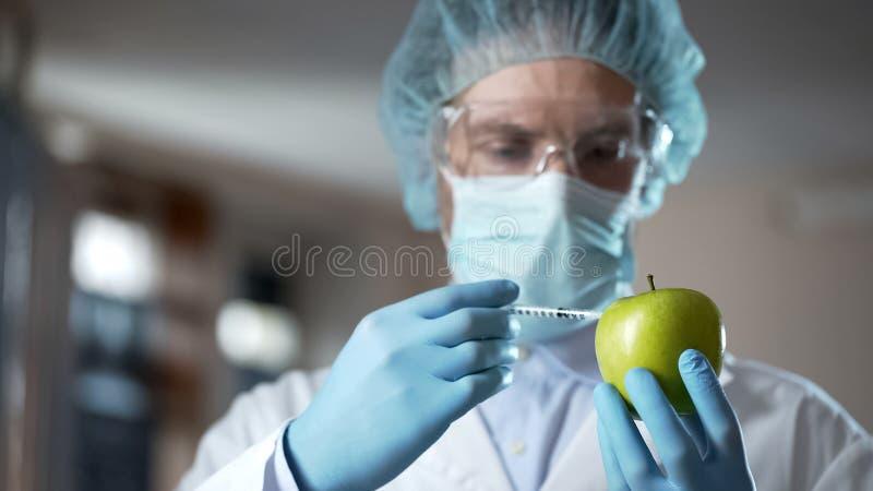 Laboratoriumarbeider die appel met chemische producten inspuiten, toevoegend geur en sappigheid royalty-vrije stock afbeeldingen