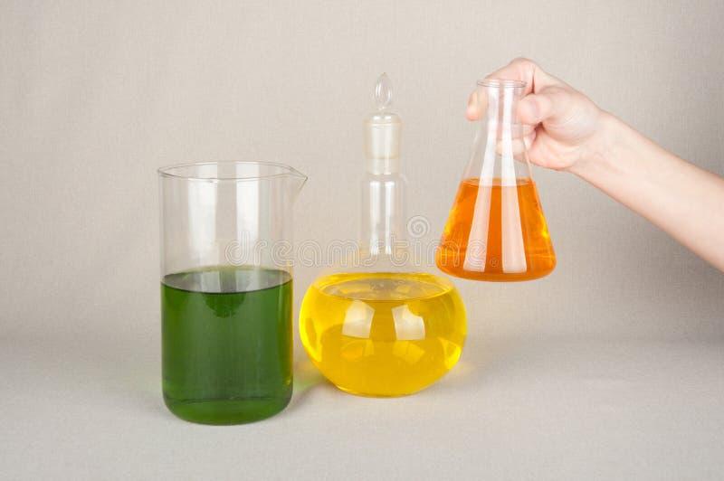 Laboratoriumflaskor med kulör flytande i hand royaltyfria bilder