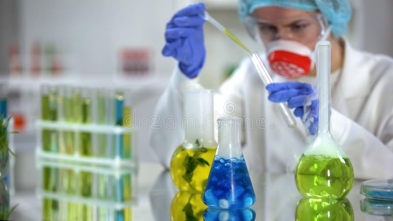 Laboratoriumonderzoeker die gele organische vloeistof gieten in buis voor analyse, de kosmetiek stock afbeeldingen