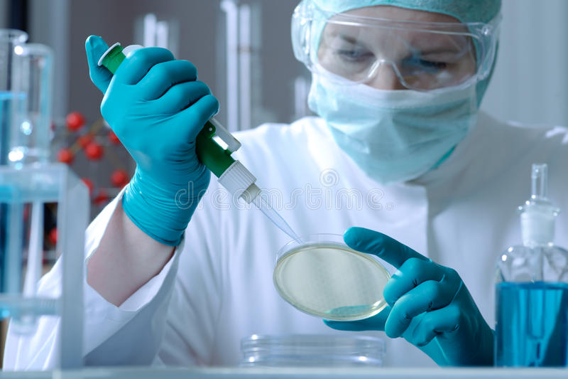 Download Laboratory stock image. Image of microbiology, medical - 10366307