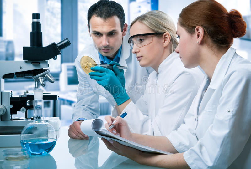 Download Laboratory stock photo. Image of hygiene, occupation - 16251816
