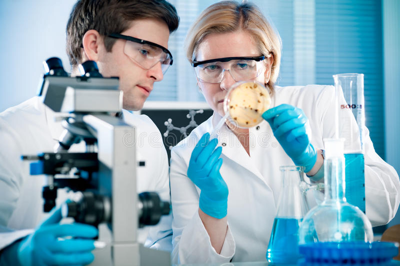 Download Laboratory Royalty Free Stock Photos - Image: 22879958