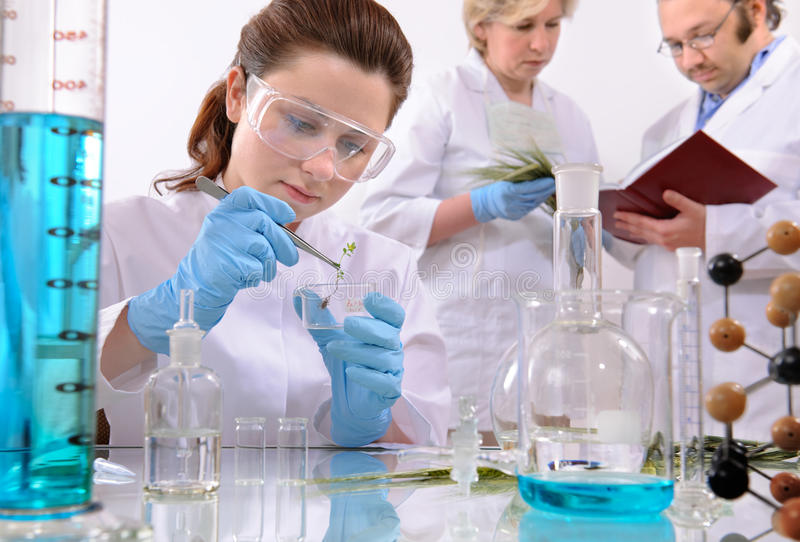Download Laboratory stock image. Image of discover, infection, experiment - 9503351