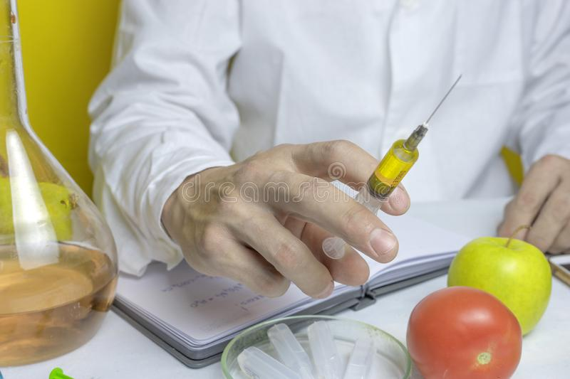 Laboratory assistant in a white robe nitrates colitis and GMOs in a tomato and an apple are lying on a table on a yellow royalty free stock image