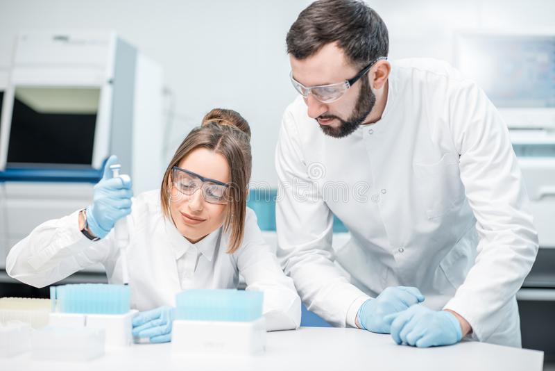 Laboratory assistants working in the medical laboratory. Laboratory assistants in uniform and protective glasses working with test tubes in the medical royalty free stock image