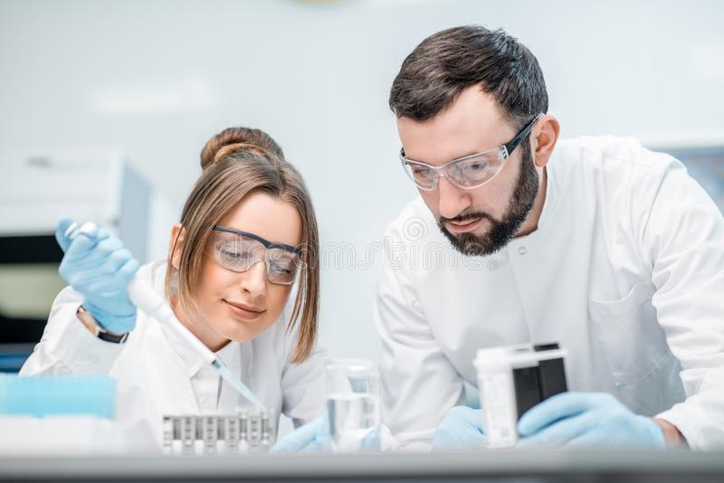 Laboratory assistants working in the medical laboratory. Laboratory assistants in uniform and protective glasses working with test tubes in the medical stock images