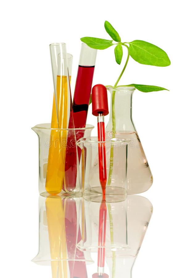Free Laboratory Equipment And Chemical Solutions. Royalty Free Stock Photos - 42731358