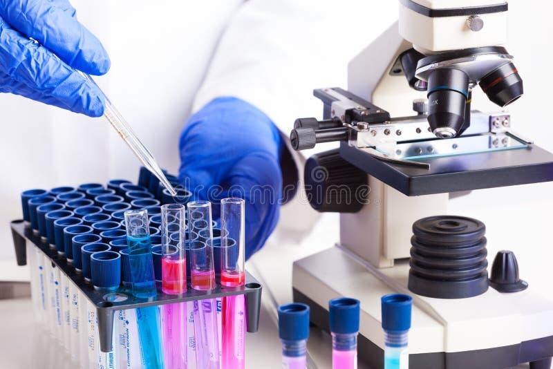 Download Laboratory equipment stock photo. Image of biology, examination - 30360352