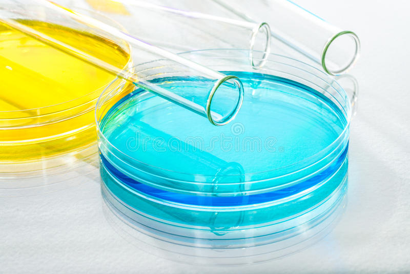 Laboratory Equipment Scientific Research, reflective white backg. Round for chemical research stock image