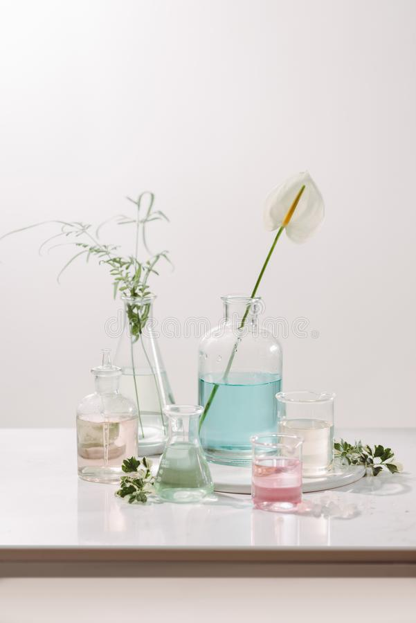 Laboratory experiment and research with leaf,oil and ingredient extract for natural beauty and organic cosmetic skincare product. The blank bottle for label stock image