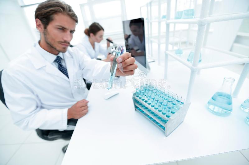 Busy group of researchers carrying out experiments royalty free stock photos