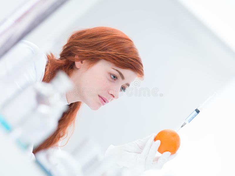 Download Laboratory injected orange stock photo. Image of attractive - 31258016