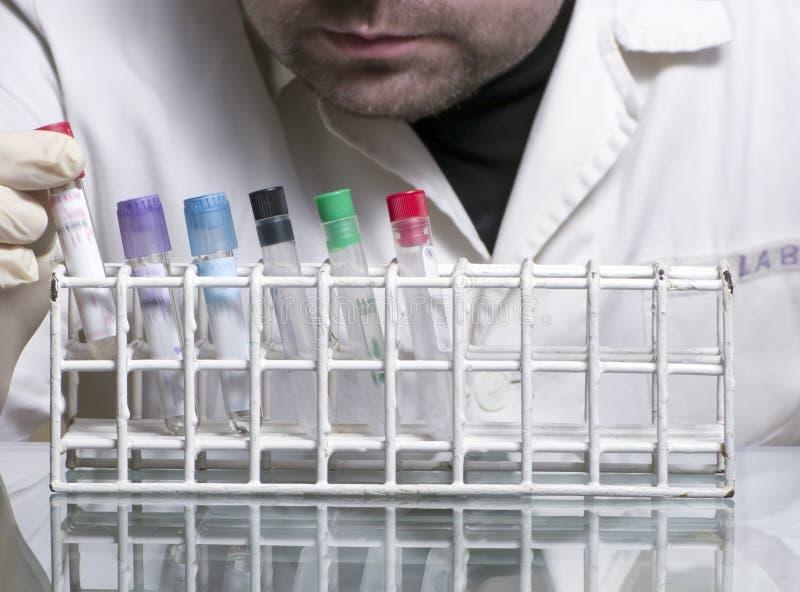 Laboratory man royalty free stock photos
