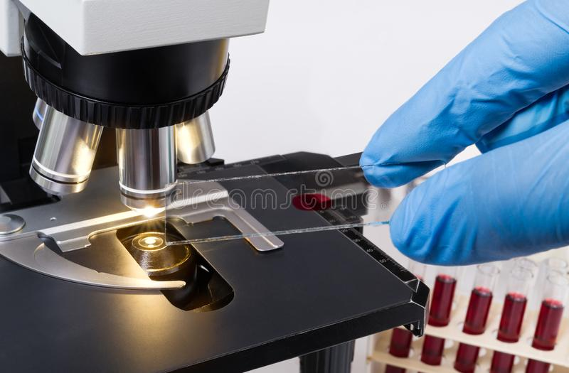 Laboratory medical microscope detail. Hand in blue glove holding specimen on glass slide royalty free stock image