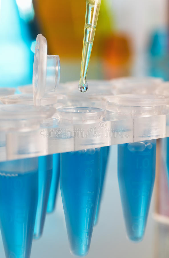 Detail of a laboratory pipette depositing a drop royalty free stock image