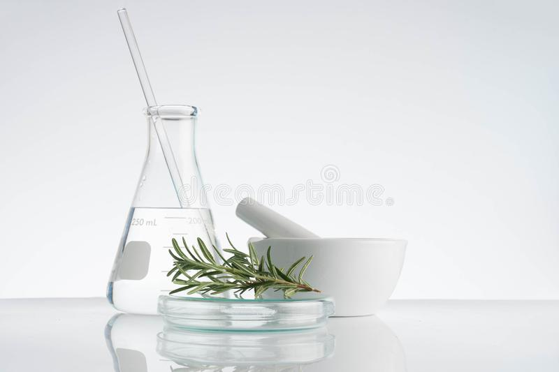 laboratory and research with alternative herb medicine stock photography