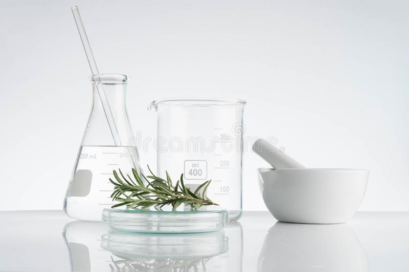 Laboratory and research with alternative herb medicine. Natural skin care royalty free stock photos