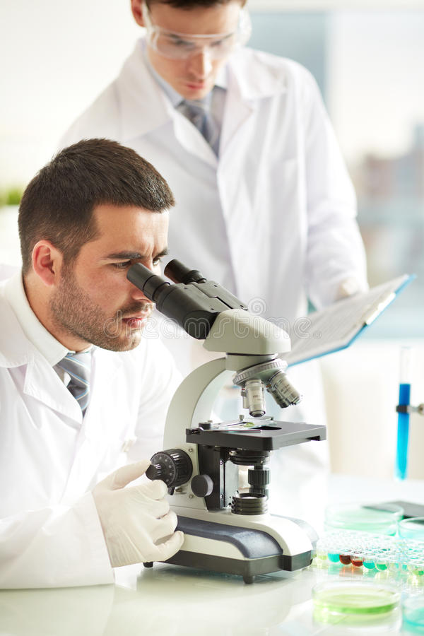 Download Laboratory research stock photo. Image of gloved, biochemistry - 33833274