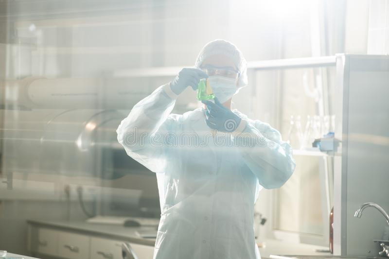 Laboratory testing for researching infection royalty free stock image