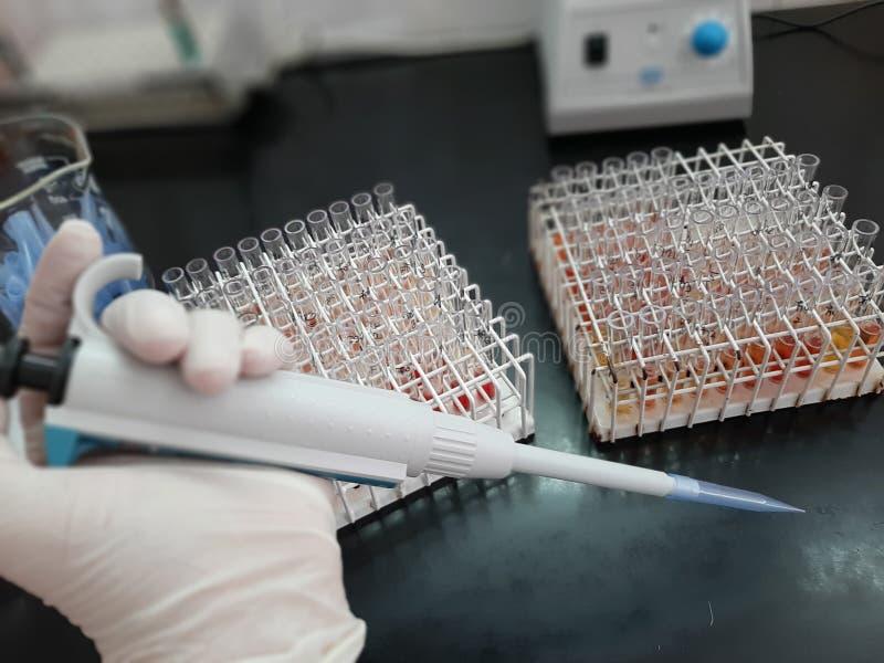 Laboratory work serum tube stock images