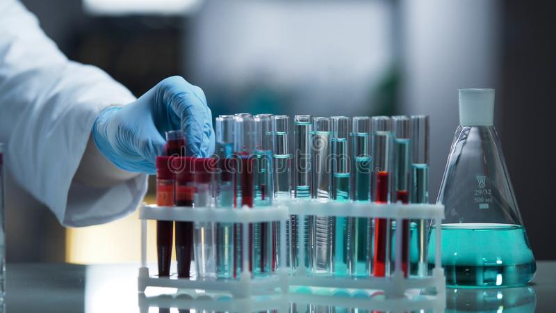Laboraufspannfläche besetzt durch Reagenzgläser und Flaschen, Forschungsprozeß stockbilder
