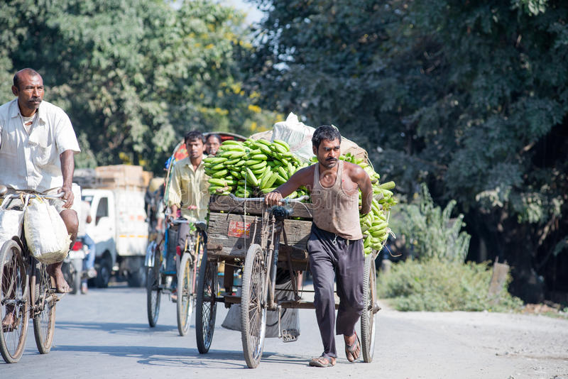Labour in Siliguri. SILIGURI, INDIA – DECEMBER 5, 2016: local pulling a three-wheeled card laden with banana from the wholesale market stock photography