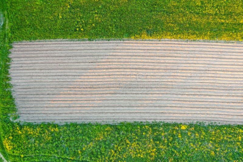 Labourant des sillons de terre pour planter les usines agronomiques parmi la campagne des arbres d'herbe et de prés, vue aérienne photos stock